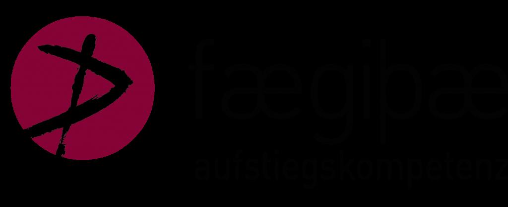 Aufstiegskompetenz faegibpae